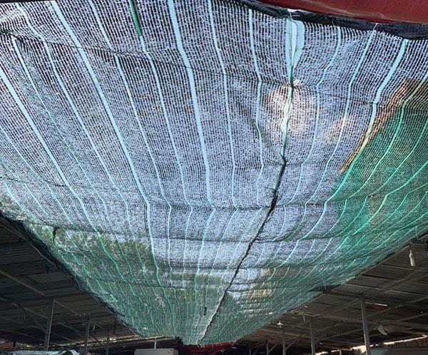 Lưới che nắng